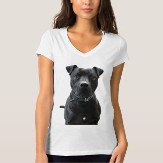 Camiseta Eu apoio Sarge