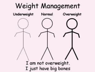 Camiseta Eu não sou excesso de peso. Eu apenas tenho os ce18b28253b