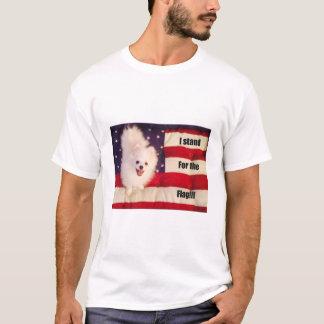 Camiseta Eu represento o t-shirt da bandeira