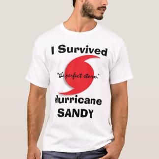 Camiseta Eu sobrevivi a SANDY