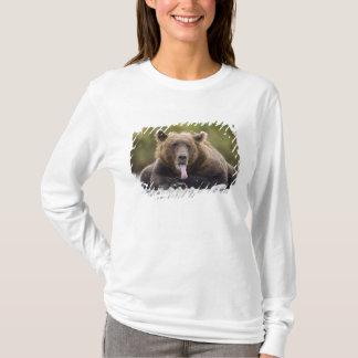Camiseta EUA, Alaska, parque nacional de Katmai, baía de