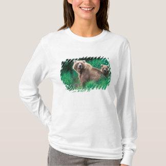 Camiseta EUA, Alaska, parque nacional de Katmai, urso 5