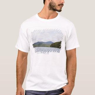 Camiseta EUA, Estados de Nova Iorque, montanhas de