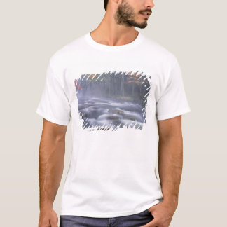 Camiseta EUA, New York, Adirondacks, rio grande dos alces