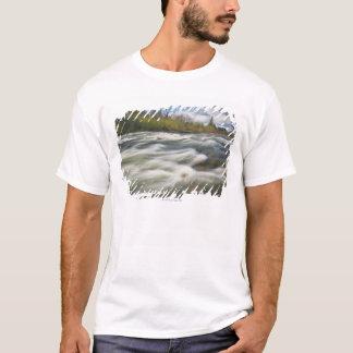 Camiseta EUA, Oregon, o Condado de Linn, angra de Crabtree
