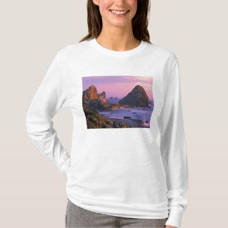 Camiseta EUA, Oregon, praia de estado de Harris, Brookings.