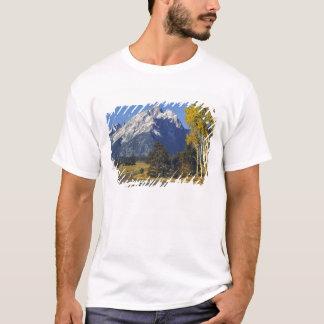 Camiseta EUA, Wyoming, Teton grande NP. Parkway de Teton