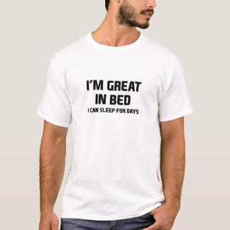 Camiseta Excelente na cama