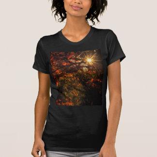 Camiseta Explosão da queda