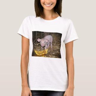 Camiseta Fazenda leitão
