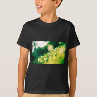 Camiseta Feche acima da foto do dente-de-leão
