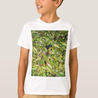 Camiseta Feijões verdes…