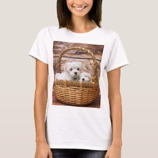 Camiseta filhotes de cachorro malteses na cesta