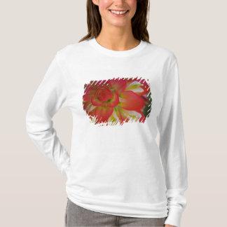 Camiseta Fim-acima da escova de pintura indiana perto do