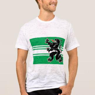 Camiseta flanders do leste, Bélgica