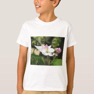 Camiseta Flor cor-de-rosa da maçã no primavera. Toscânia,