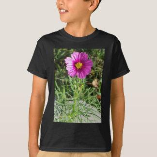 Camiseta Flor cor-de-rosa escura da margarida do cosmos
