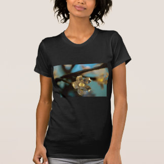 Camiseta Flor de cerejeira iluminada