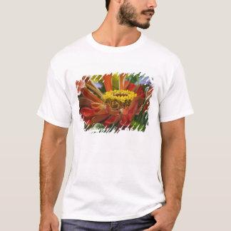 Camiseta Flor do crisântemo