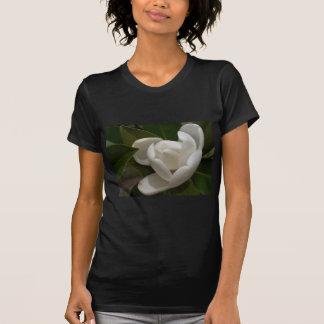 Camiseta flor em botão branca de magnólia do sul