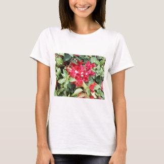 Camiseta Flores do vermelho de DSCN0885.JPG