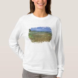 Camiseta Formações corais na praia dos túneis