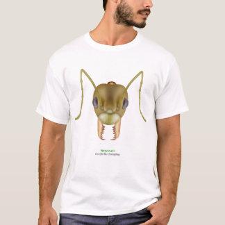 Camiseta Formiga do tecelão