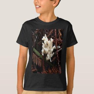 Camiseta Fungo coral do marfim