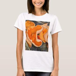 Camiseta Fungo de casca alaranjada, aurantia de Aleuria