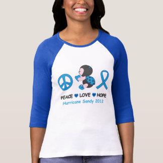 Camiseta Furacão Sandy da esperança do amor da paz do