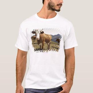 Camiseta Gado