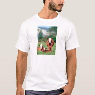 Camiseta Gado do hereford de Brown
