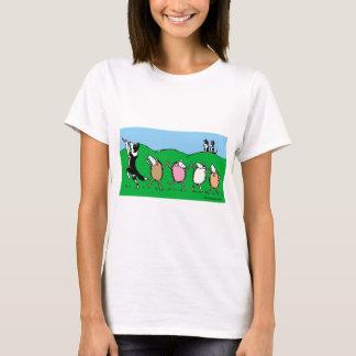 Camiseta Gaiteiro Pied de border collie