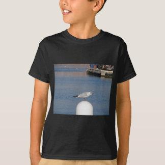 Camiseta Gaivota de cabeça negra empoleirada cargo na