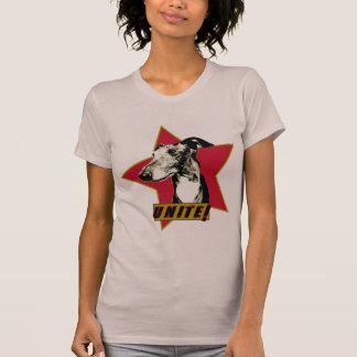 Camiseta Galgo italiano - una!