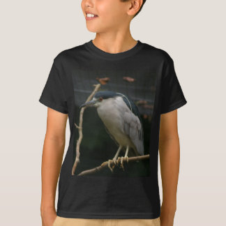 Camiseta garça-real de noite Preto-coroada