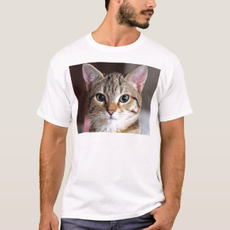 Camiseta Gatinho bonito do gato de gato malhado