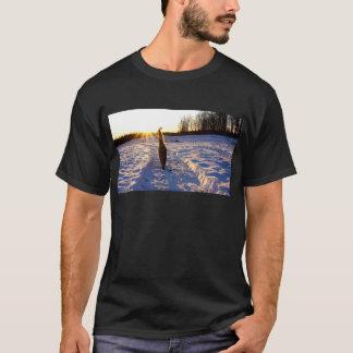 Camiseta Gatinho da neve