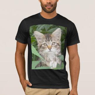 Camiseta Gatinho do gato malhado