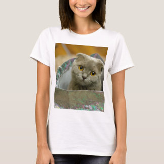 Camiseta Gatinho em um saco