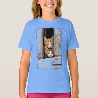Camiseta Gatinhos bonitos em uma janela azul do vintage -