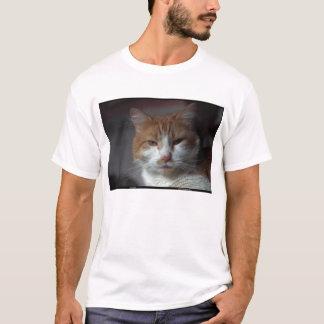 "Camiseta Gato alaranjado e branco do ""cravo-de-defunto"" de"