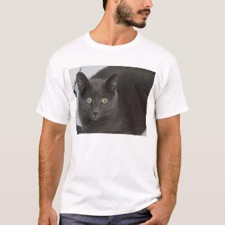 Camiseta Gato cinzento com os olhos verdes impressionantes