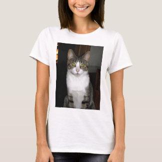 Camiseta Gato de gato malhado com os olhos verdes grandes