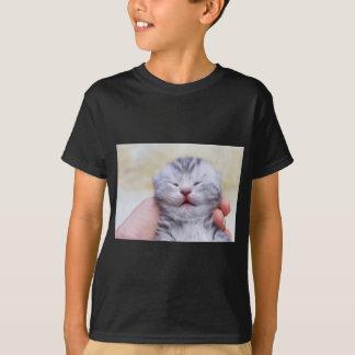 Camiseta Gato de gato malhado de prata recém-nascido