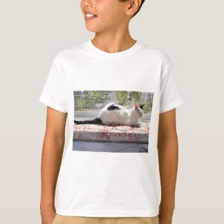 Camiseta Gato do gatinho que relaxa em uma janela