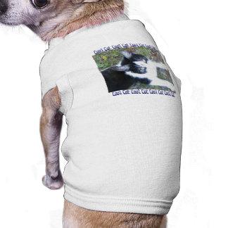 Camiseta Gato legal (menino)