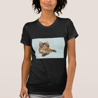 Camiseta Gato, racum de Maine