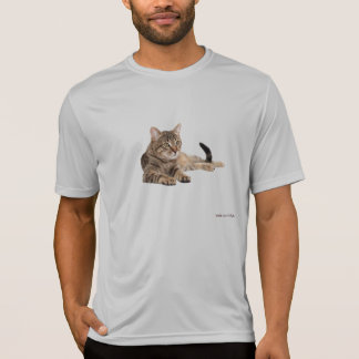 Camiseta Gatos 6