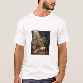Camiseta Génese 28 12